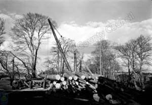 Unloading Logs, Saw Mill, Harewood Estate